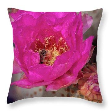 Bee On A Beavertail Throw Pillow