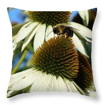 Throw Pillow featuring the photograph Bee On A Cone Flower by Lingfai Leung