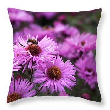 Throw Pillow featuring the photograph Bee On A Daisy by Susan Leonard