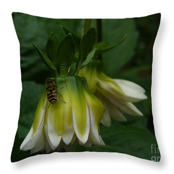Throw Pillow featuring the photograph Bee On Flower by Jane Ford