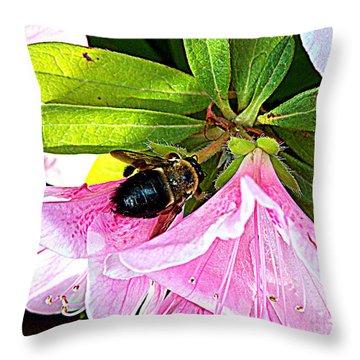 Bee On  Pink Azalea Throw Pillow by Kathy  White