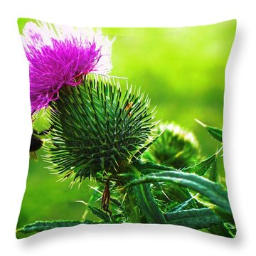 Bee On Thistle Throw Pillow by Joy Nichols