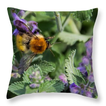 Throw Pillow featuring the photograph Bee Too by David Gleeson