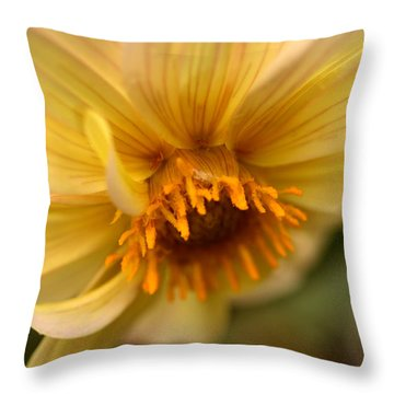 Bee Trap Throw Pillow