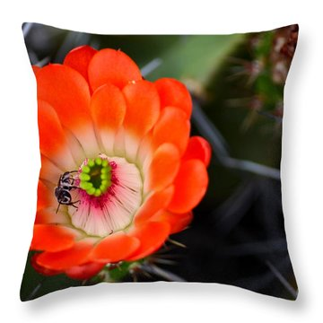 Bee Ware The Thorns Throw Pillow by Deb Halloran