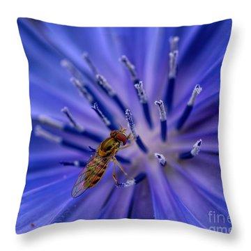 Bee - Wildflower - Chicory Throw Pillow