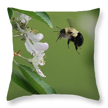 Bee With Apple Blossoms Throw Pillow