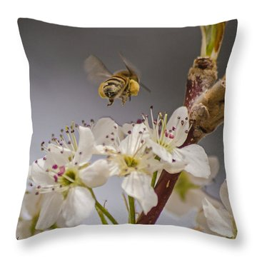 Bee Working The Bradford Pear 2 Throw Pillow