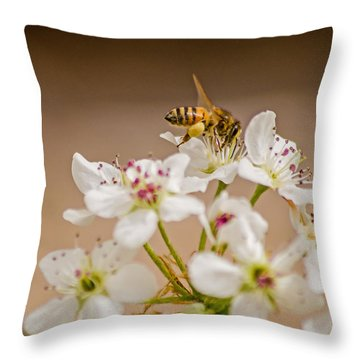 Bee Working The Bradford Pear 4 Throw Pillow