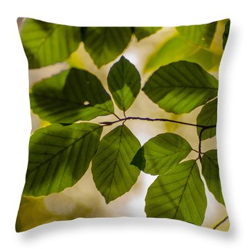 Beech Leaves And Bokeh Throw Pillow