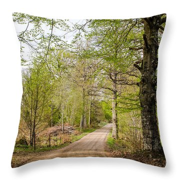 Throw Pillow featuring the photograph Beeches At Springtime by Kennerth and Birgitta Kullman