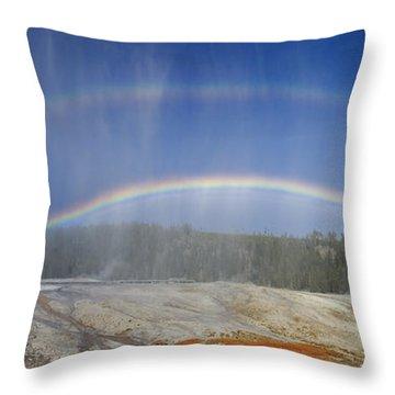 Beehive's Double  Rainbow Throw Pillow