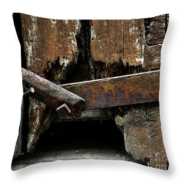 Throw Pillow featuring the photograph Been There by Newel Hunter