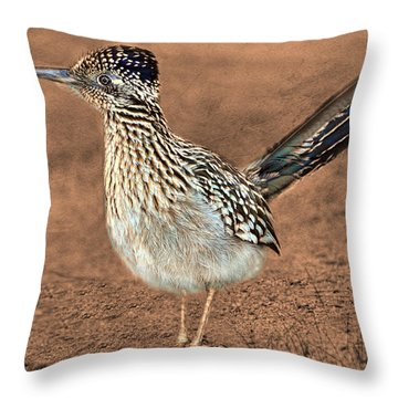 Beep Beep Throw Pillow by Barbara Manis