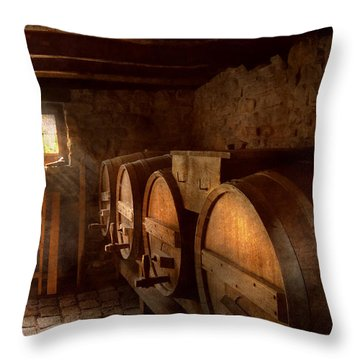 Beer Maker - The Brewmasters Basement Throw Pillow by Mike Savad