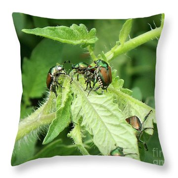 Throw Pillow featuring the photograph Beetle Posse by Thomas Woolworth