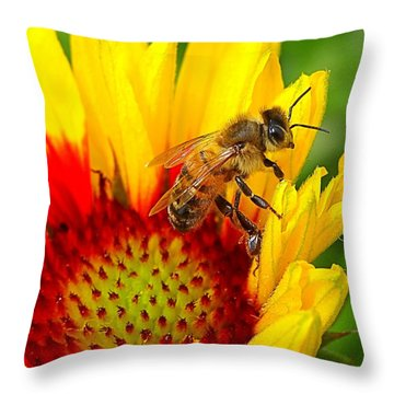 Beezy Bee Throw Pillow
