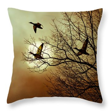 Before A Winter Sky Throw Pillow by Bob Orsillo
