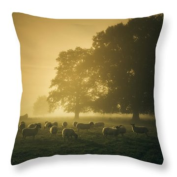 Before Dawn Gathering Throw Pillow by Chris Fletcher