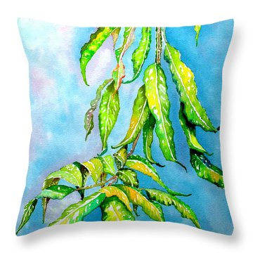 Before The Monsoon Rains Fall Throw Pillow