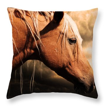 Before The Storm Throw Pillow by Jeremy Martinson