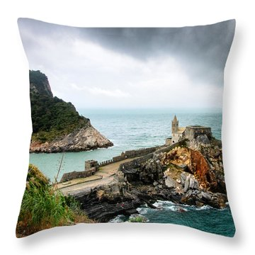 Before The Storm Throw Pillow by William Beuther