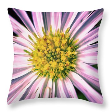 Begger's Tick Throw Pillow