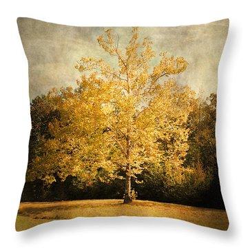 Beginning Of Autumn Throw Pillow by Jai Johnson