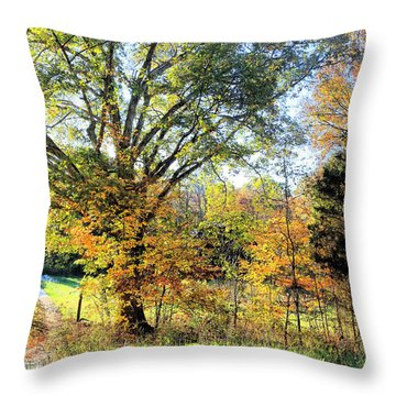 Beginning Of Fall In Watercolor Throw Pillow