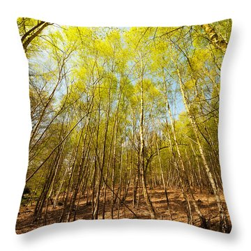 Beginning Of Spring Throw Pillow by Svetlana Sewell
