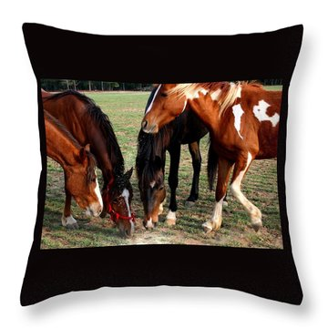 Beginning Of Stampede Throw Pillow