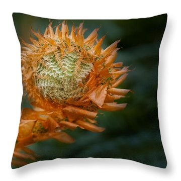Beginnings Throw Pillow by Jacqui Boonstra