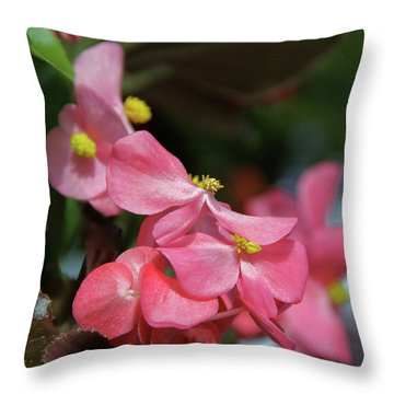 Begonia Beauty Throw Pillow