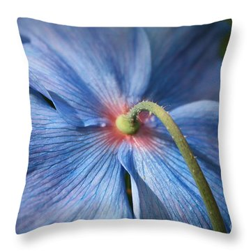 Behind The Blue Poppy Throw Pillow by Carol Groenen