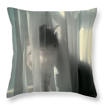 Throw Pillow featuring the photograph Behind The Curtain by Jacqueline McReynolds