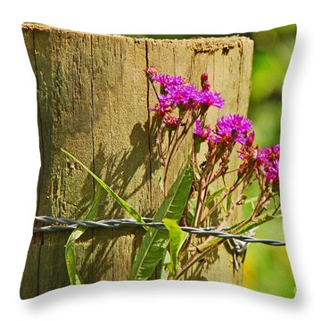 Behind The Fence Throw Pillow by Mary Carol Story