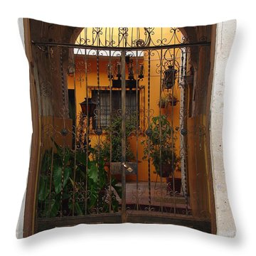 Behind The Gate Throw Pillow by Lew Davis