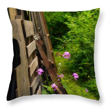 Behind The Old Shed Throw Pillow by Mary Machare