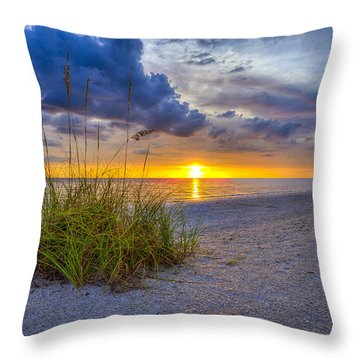 Behind The Sea Grass Throw Pillow