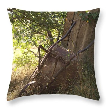 Behind The Shed Throw Pillow