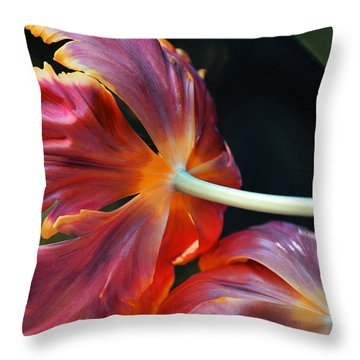 Behind The Tulips Throw Pillow by Fraida Gutovich