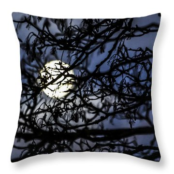 Behind The Veil Throw Pillow
