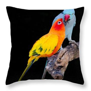 Sun Conure And Ring Neck Parakeet 2 Throw Pillow