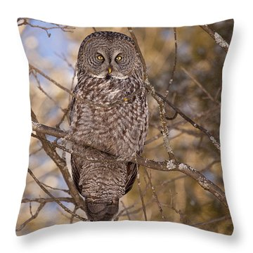 Being Observed Throw Pillow