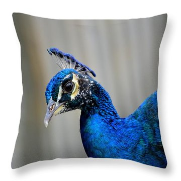 Bejeweled Throw Pillow by Jodi Terracina