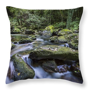 Throw Pillow featuring the photograph Belelle River Neda Galicia Spain by Pablo Avanzini