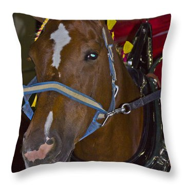 Belgian Draft Horse Throw Pillow