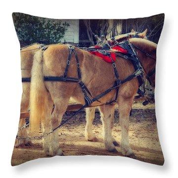 Belgium Draft Horses Throw Pillow by Charles Beeler