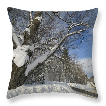 Belgrade Winter Throw Pillow