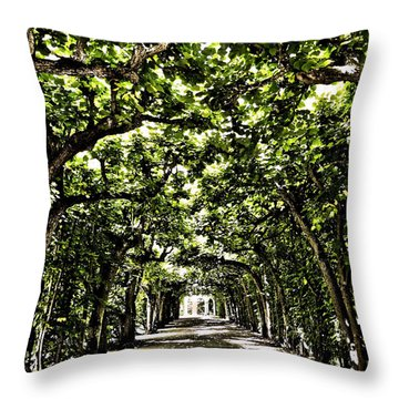 Throw Pillow featuring the photograph Believes ... by Juergen Weiss